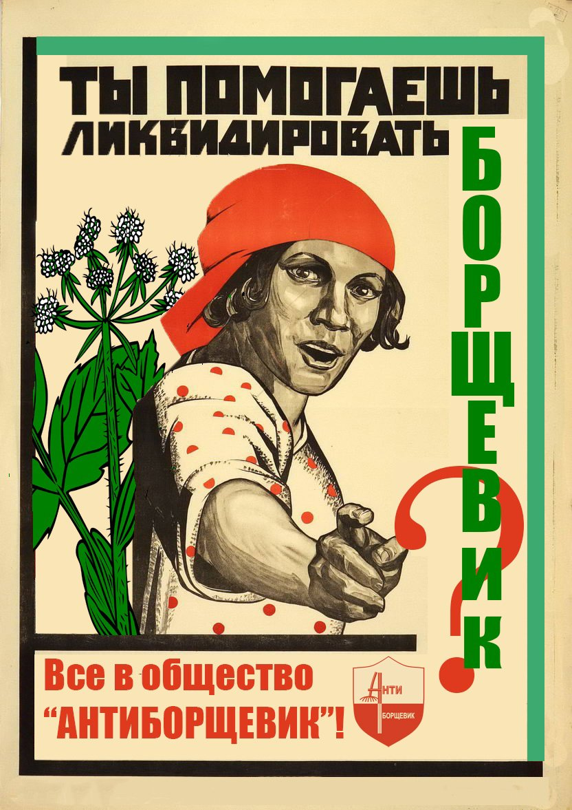 """""""Will you help to liquidate Bolshevik?"""" One in a series of infographics taken from the ANTIBORSHEVIK website"""