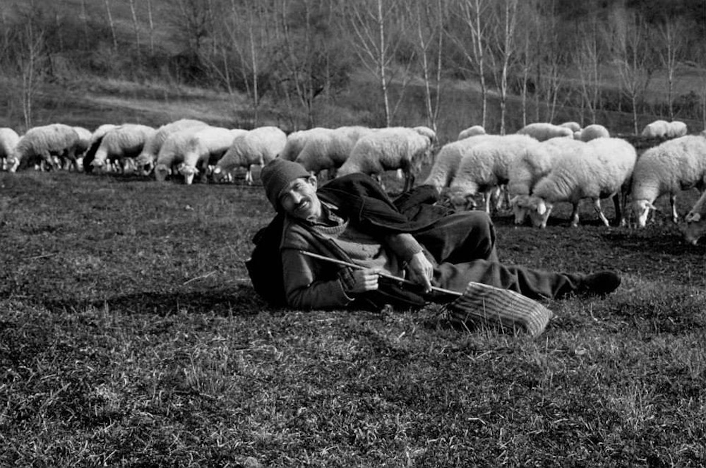 A shepherd near Strandja Mountain on the border of Turkey and Bulgaria. Photo: Nedret Benzet