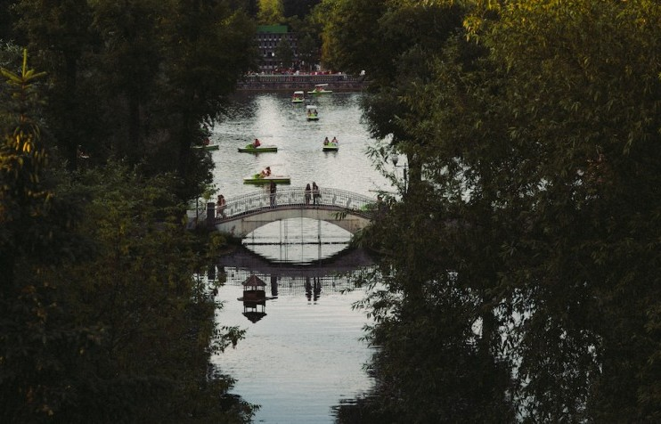 Heart of the city: what to do in Moscow's Gorky Park this summer