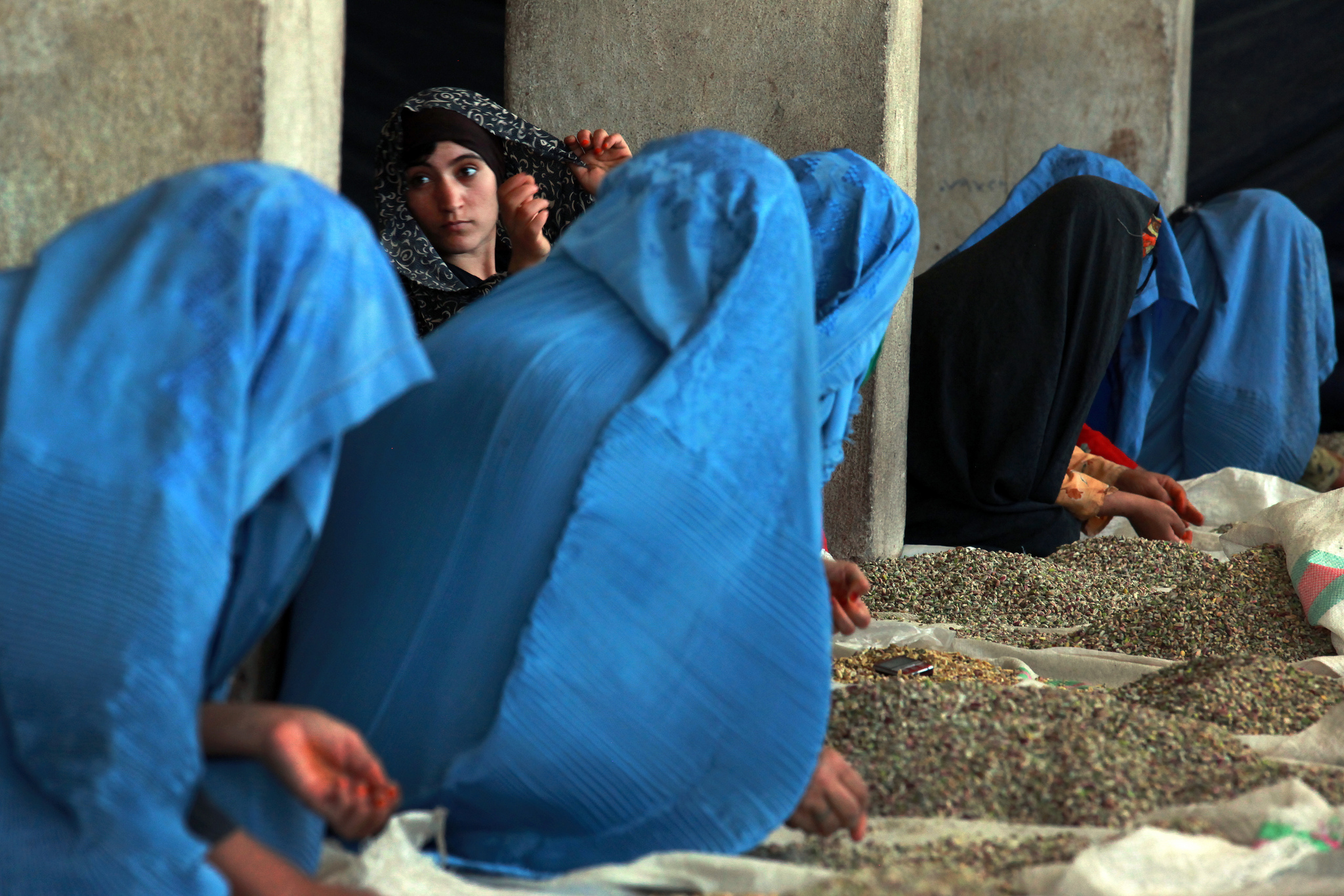 Women sort pistachios at a factory in Herat. Image: United Nations Photo under a CC License