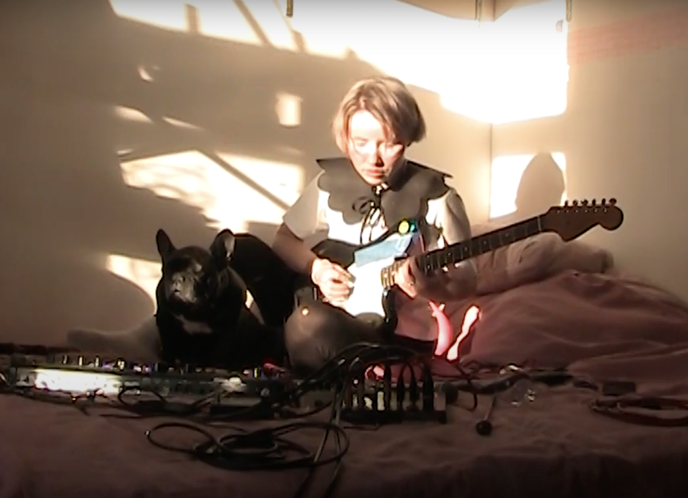 Watch Russia's best indie musicians perform from their homes