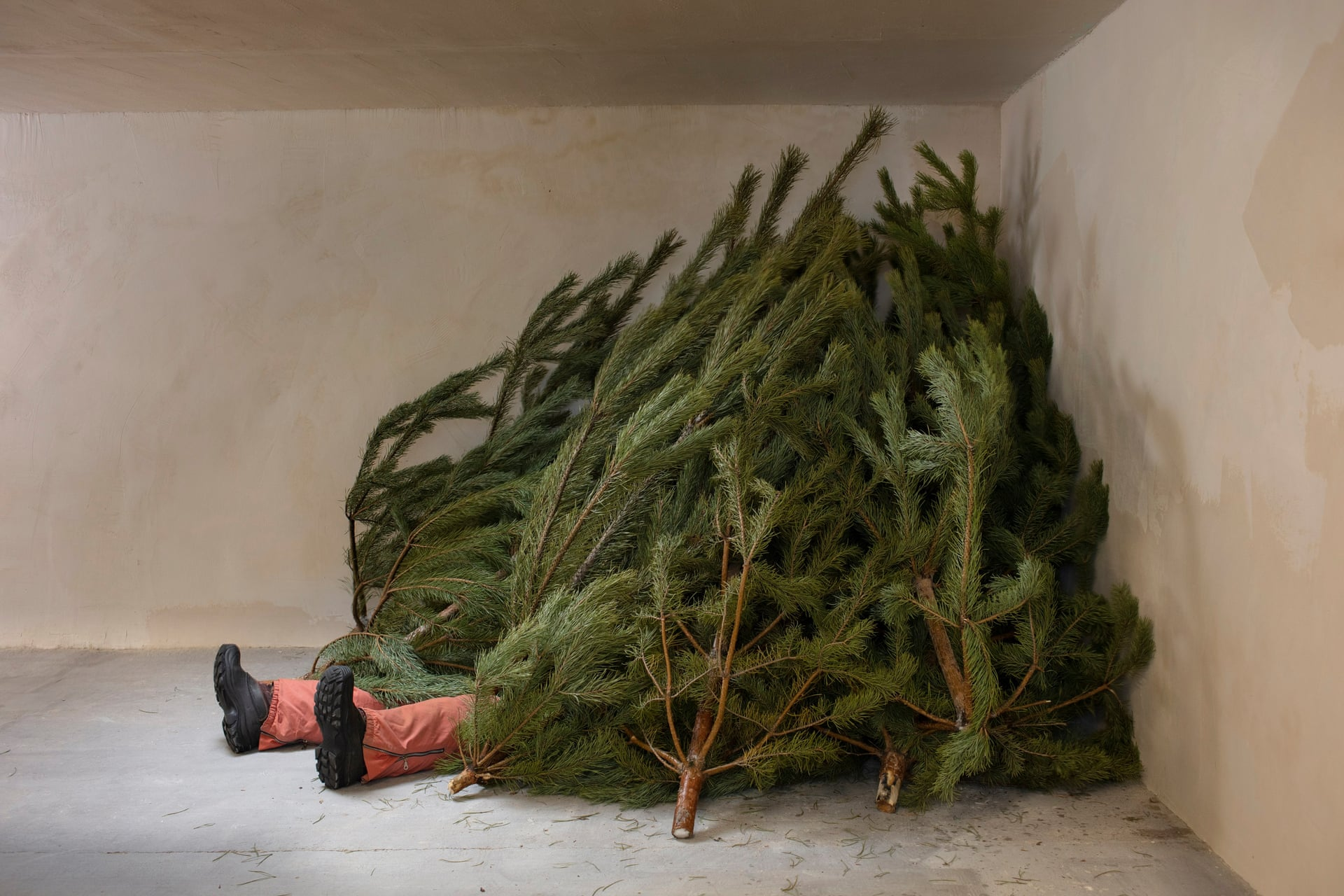 """Prozac: Self-Portrait with Christmas Trees. """"In his parents' basement, he lies buried under a pile of Christmas trees that were briefly admired but then thrown away, no longer wanted. This is how the new year begins for them"""""""