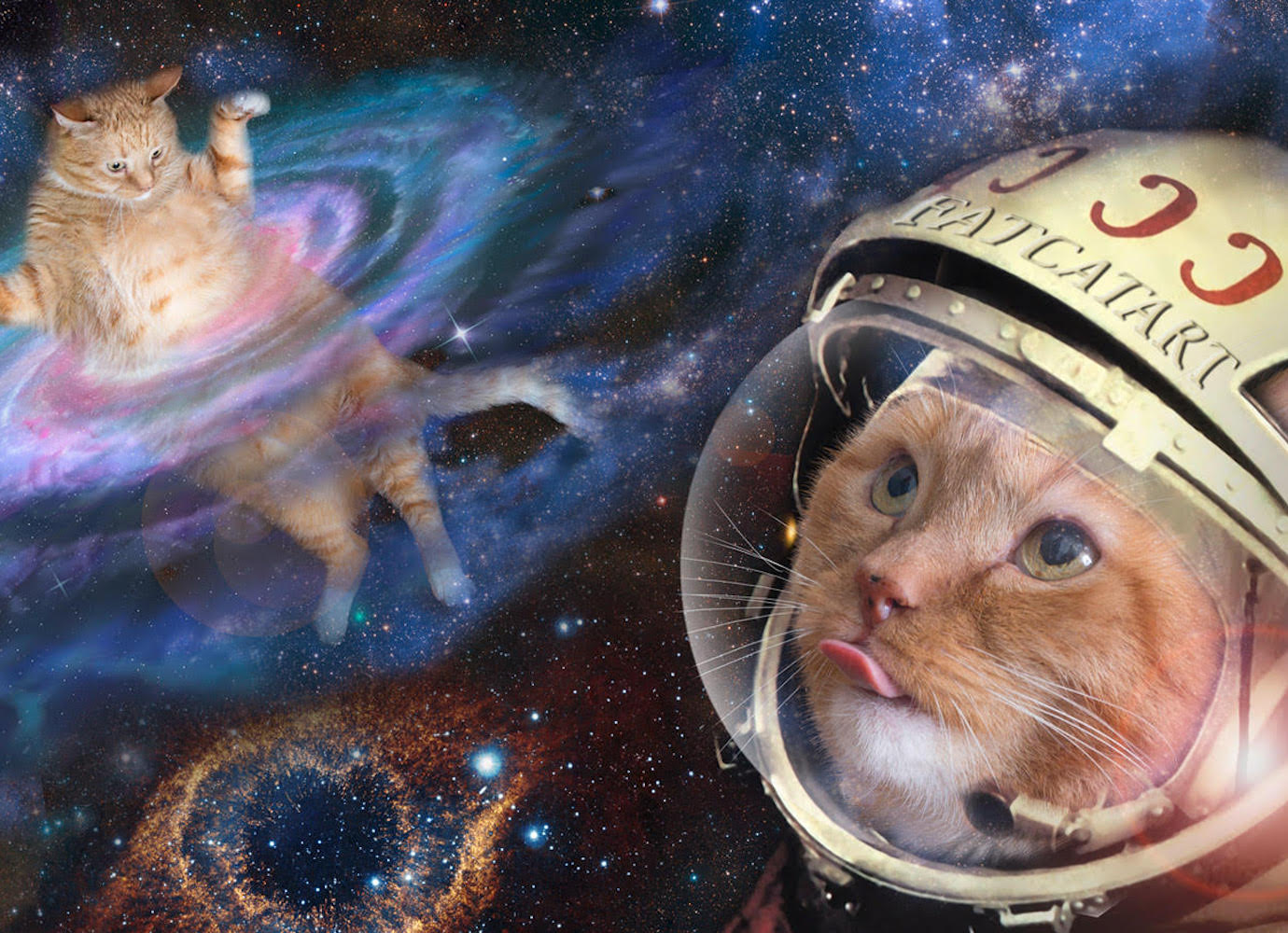 Follow the fat cat that photobombs classic paintings in his adventures across art history