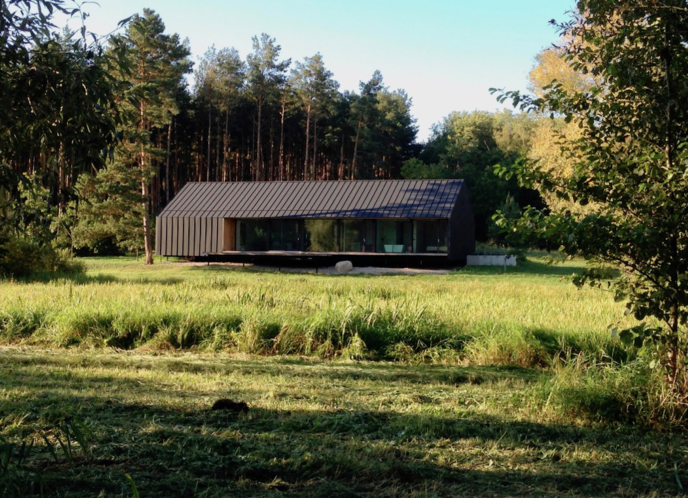 Built in a Polish nature reserve, this minimalist house blends into its natural home