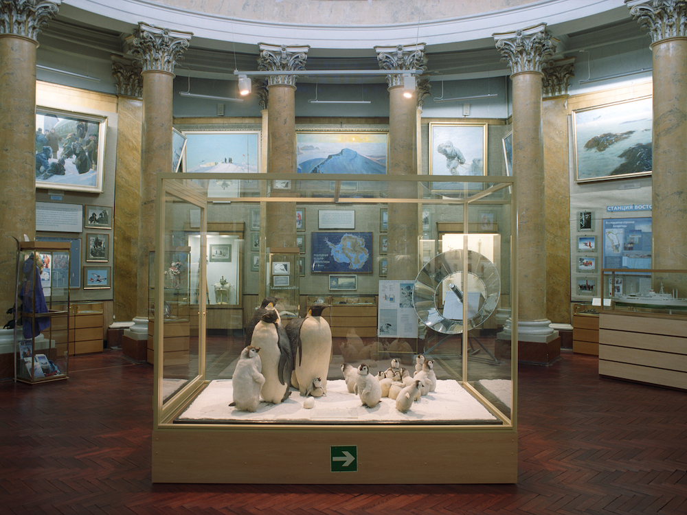 Arctic and Antarctic Museum, St. Petersburg