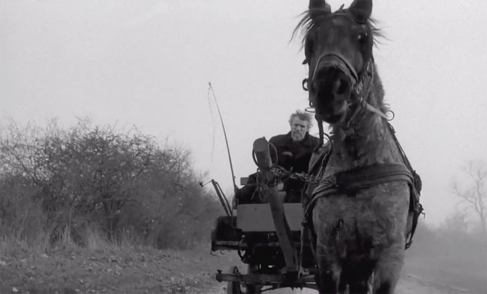 Still from The Turin Horse (2011) (image courtesy of Béla Tarr)