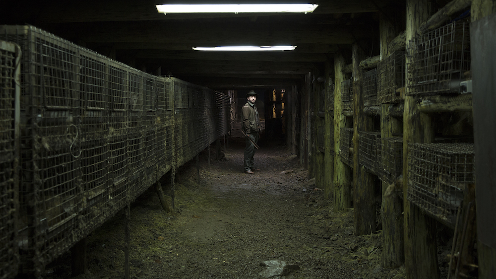 Still from <em>Spoor</em> (2017) (image: Robert Pałka)
