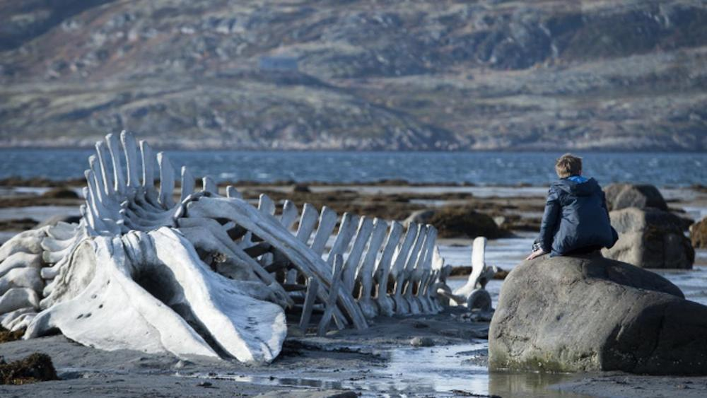 Stills from Leviathan (2014)