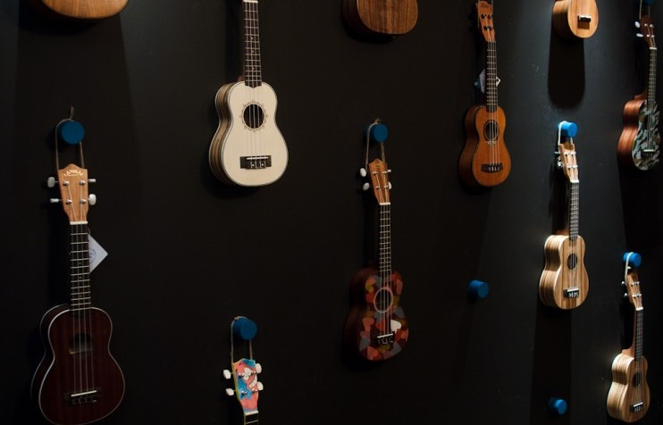 Ukuleleshnaya, a ukulele and vinyl shop