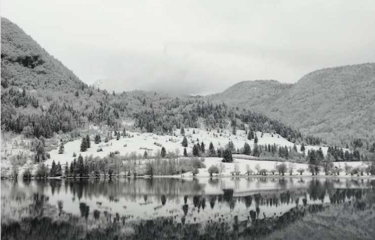 Winter breaks Lake Bohinj