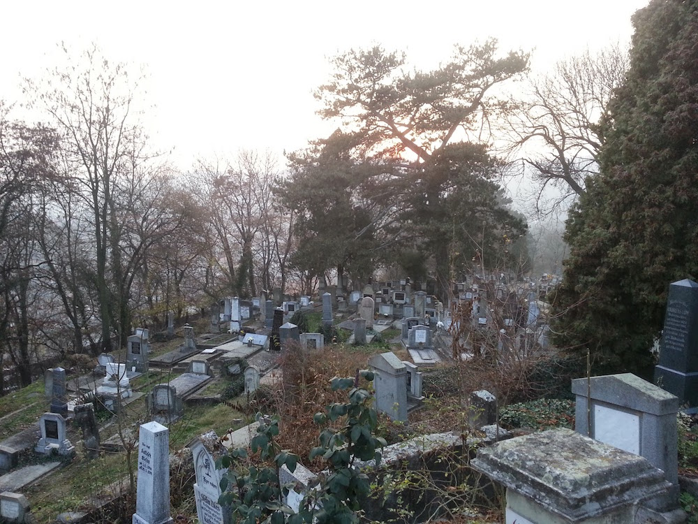 """I'm standing in a Transylvanian graveyard. So far, so good as Halloween locations go"""