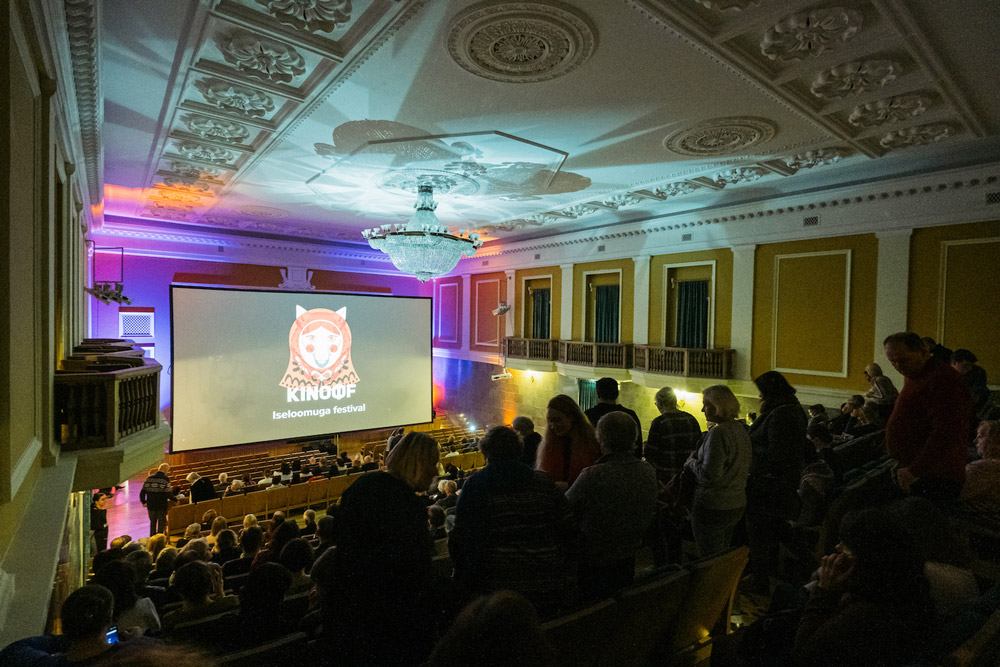 A screening at the KinoFF Festival. Image: Aron Urb