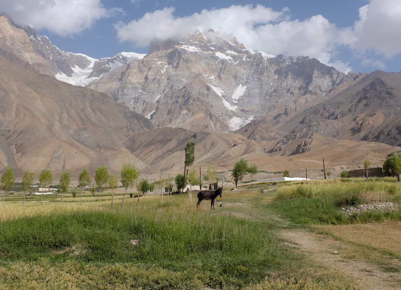 Letter from the Pamirs: dreaming of an impossible garden in Tajikistan's mountainous hinterland