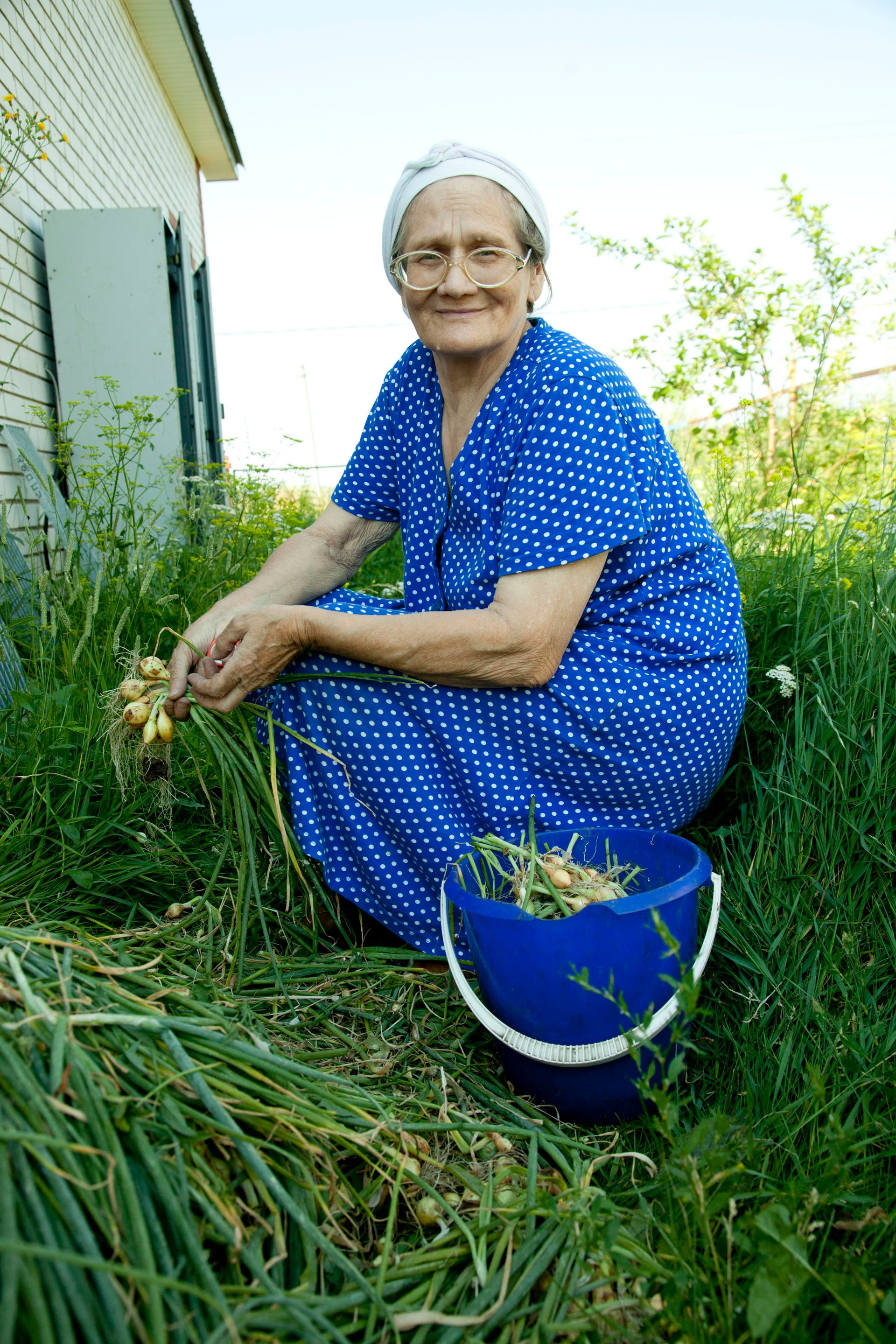 During the harvest season, the babushkas (grandmothers) of Kamskie-Polyani get together and go from home to home to help gather and preserve the large garden plots necessary for survival in this town without an economy