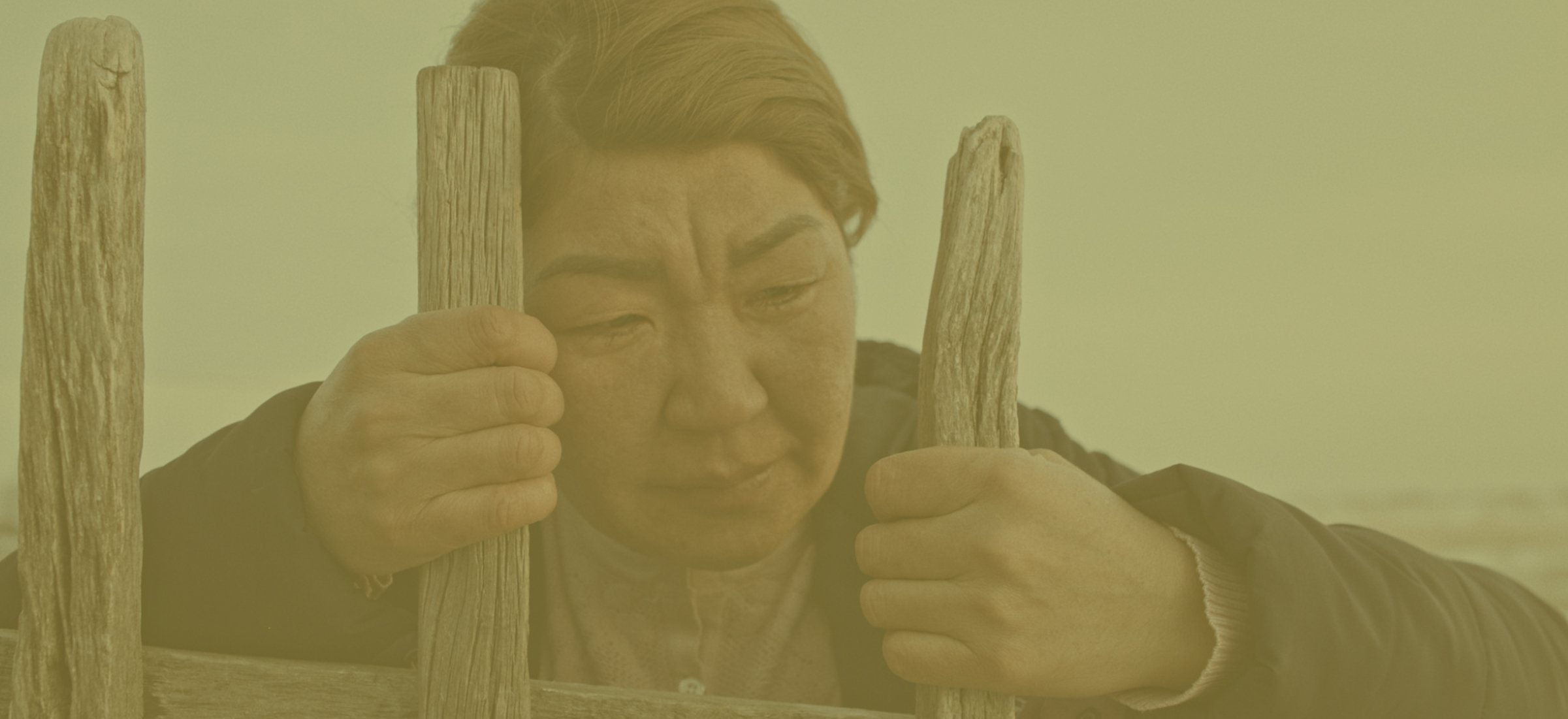 A woman fights for survival in a remote village on the Kazakh Steppe after her husband disappears and is presumed dead.