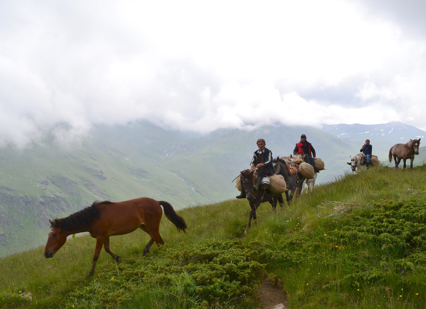Letter from the Sharr Mountains: on Kosovo's highest peak, shepherds are keeping ancient traditions alive
