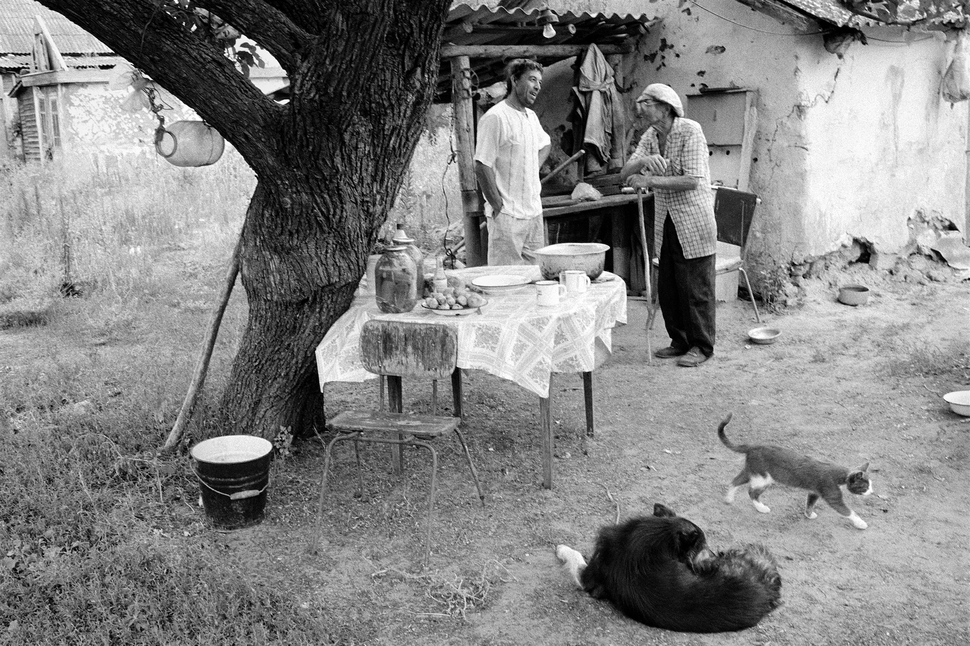 Chat in a courtyard, village of Oblivskaya district, Rostov-on-Don region, Russia (2010)
