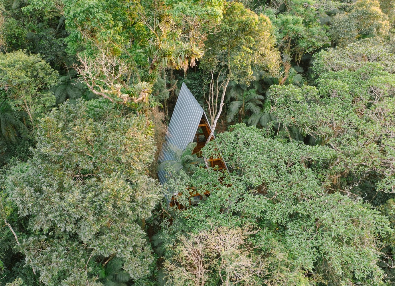 Monkey House: Croatian architect designs a vertical home in the Brazilian forest
