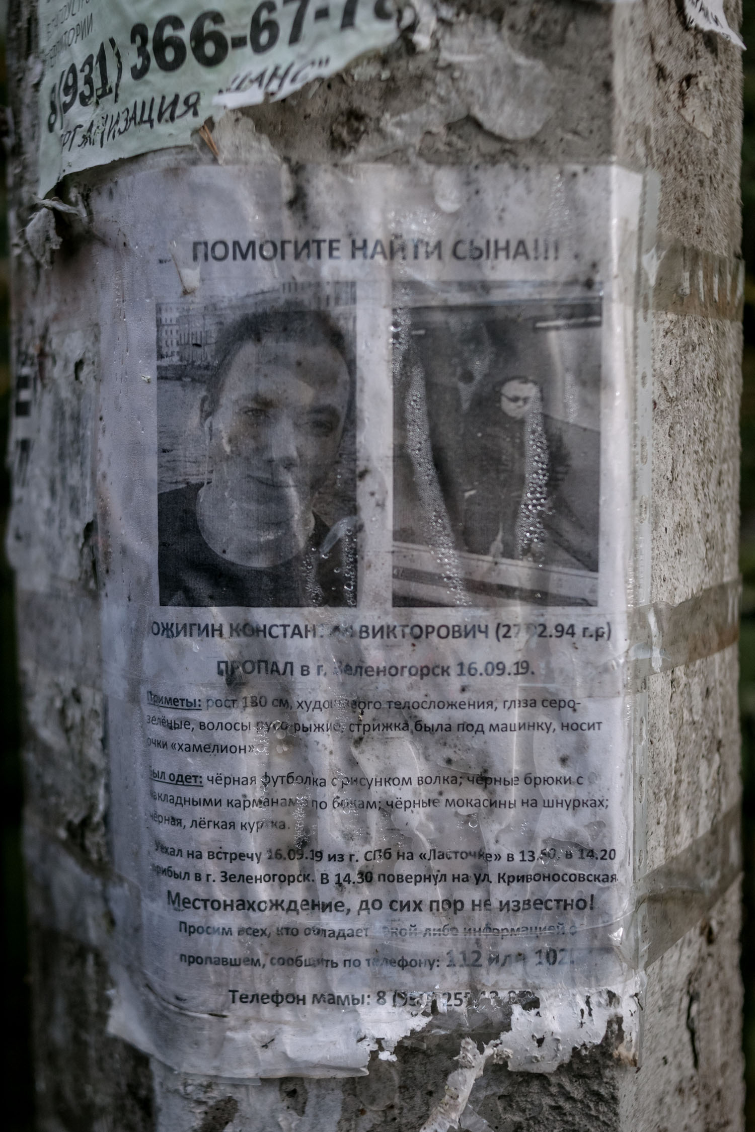 Poster printed by relatives of the missing teenager. The search continues in Zelenogorsk for more than a year.