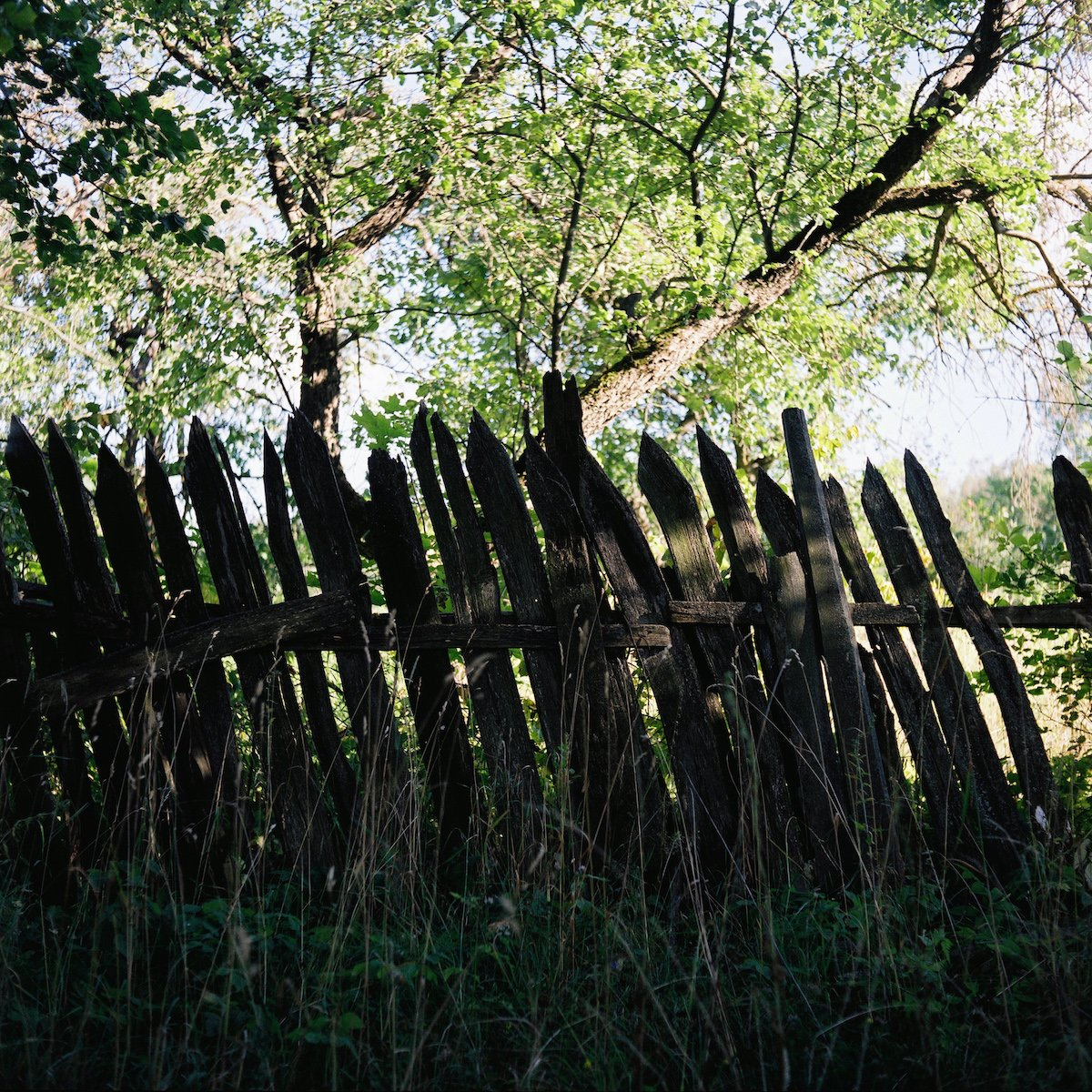 A typical fence in Chekalin
