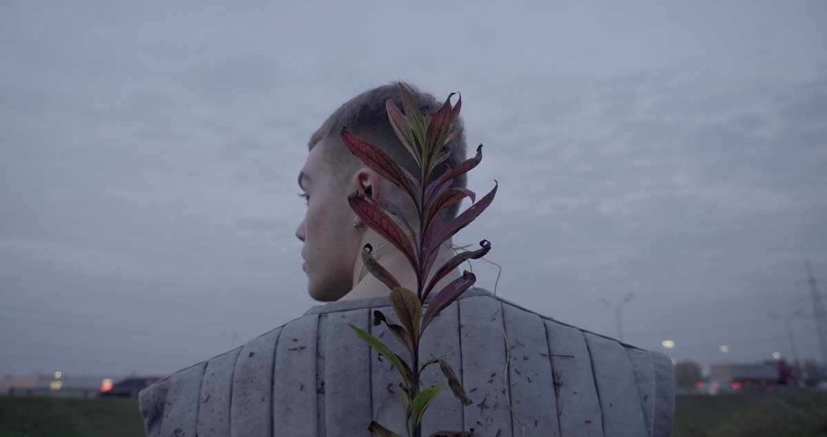 Tree Lover: one Muscovite's ode to the fragments of nature that survive the urban wilds
