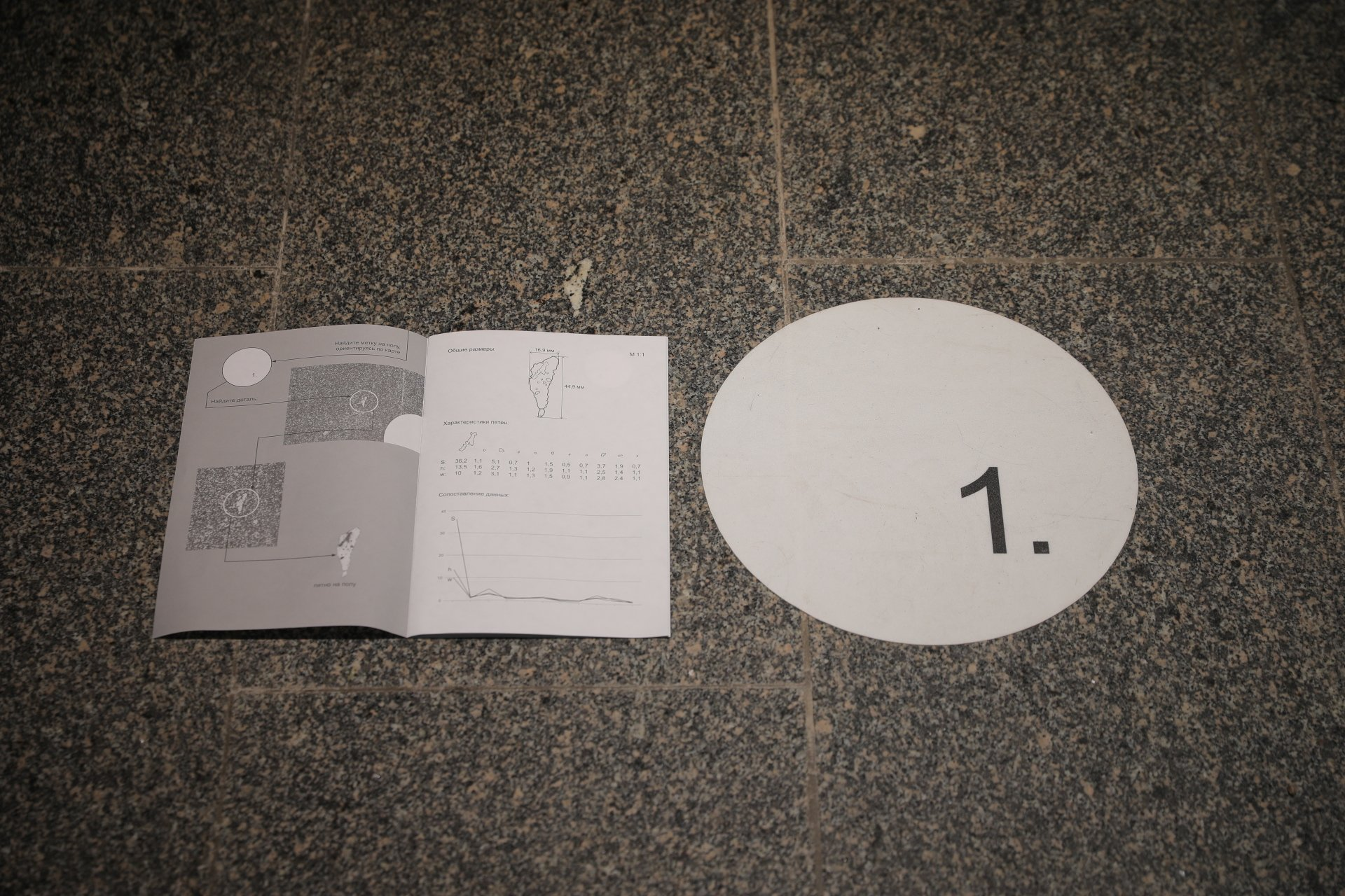 Documentation of the Manege. Datafield project. NEMOSKVA, 2020. This zine offered a guide to the exhibition space focusing on insignificant details of the environment
