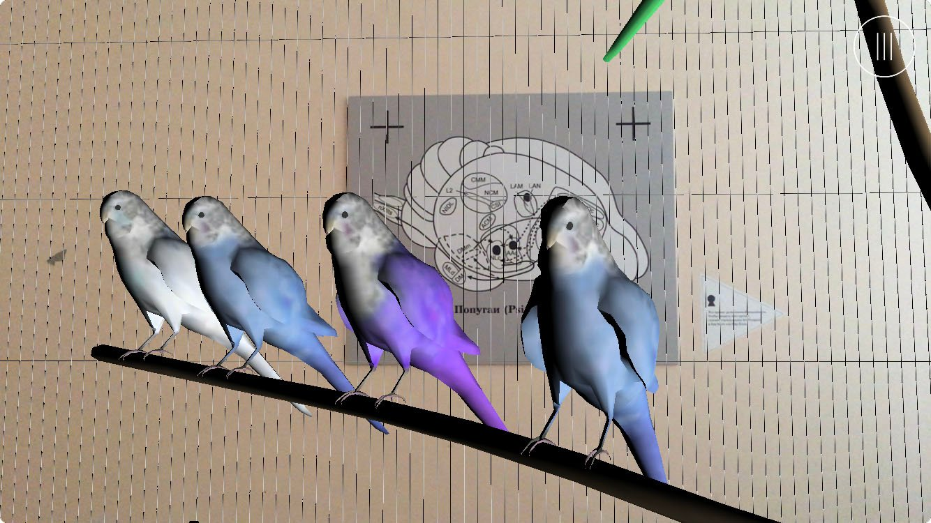 AR project Parrots of the Gaza Palace of Culture, 2020. Art Prospect festival, St Petersburg. An AR restoration of a bird cage from the Palace of the 90s, with parrots pronouncing words and phrases from the tag cloud of the space