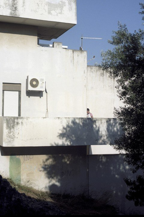 Summertime Split: modernist architecture with a mediterranean flavour