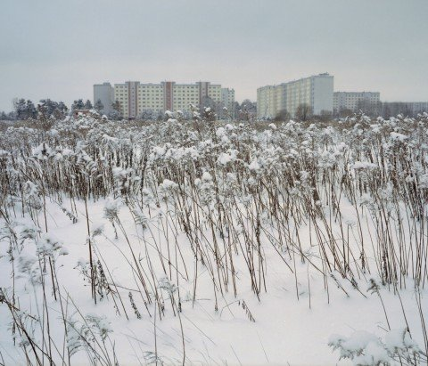 Winter wonderland: stunning snowy scenes from across the New East