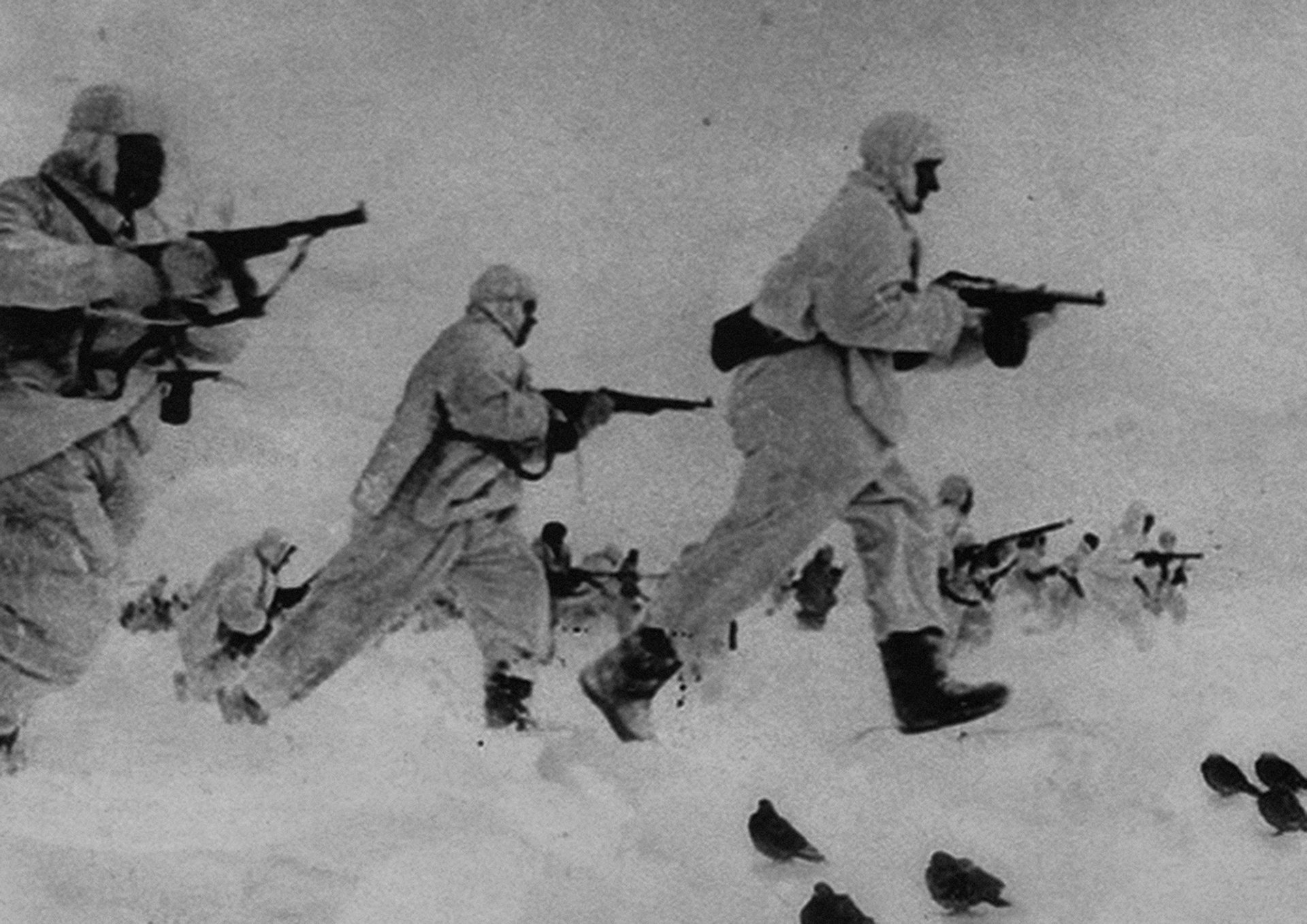 Spy pigeons on the battlefield during World War II, 1943. The memoirs of Yan Khtovich, 2015-2017