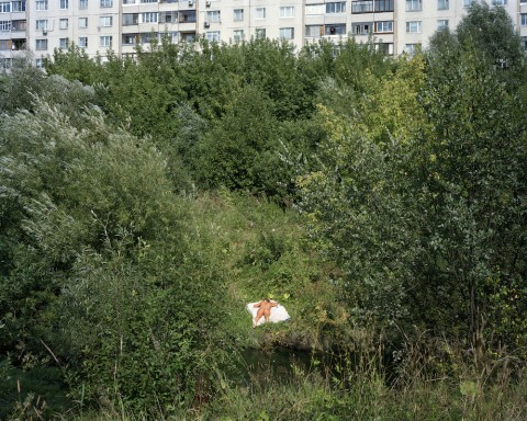 Urban pastoral: Alexander Gronsky's visions of thwarted arcadia