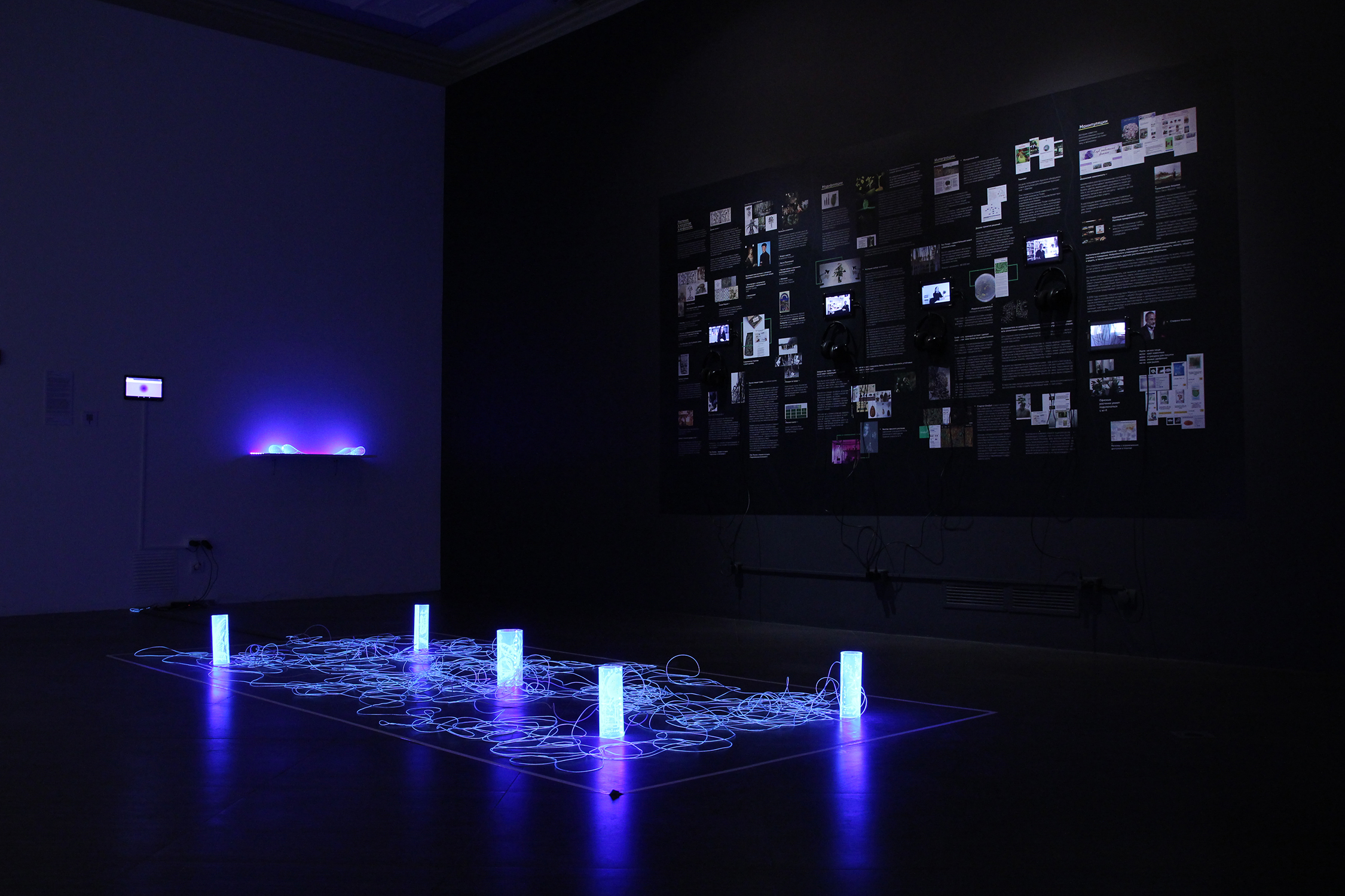 flora.onion 2.0, Ekaterina Art Foundation, 2019. This large project imagines a darknet for plants—an idea that, in the world where agriculture uses IT and special software, isn't as sci-fi as it seems