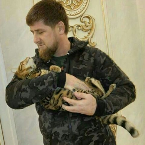 Chechen leader Ramzan Kadyrov in lost cat Instagram plea