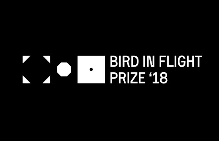 Embrace creative freedom with this year's Bird in Flight Prize