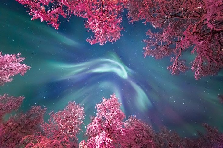 New East photographers shortlisted for Astronomy Photographer of the Year