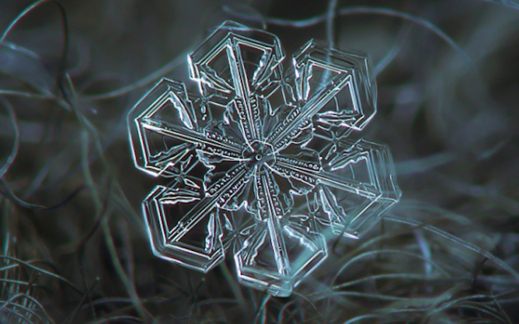 Crystal close-ups: discover Russia's top snowflake photographer