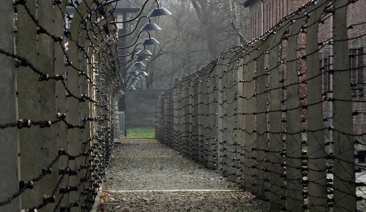 Poland publishes first Auschwitz staff database