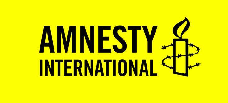 "Amnesty International launches campaign against Russia's ""foreign agents"" law"