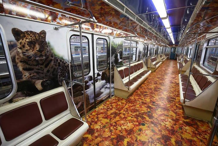 Tigers and leopards raise awareness on Moscow Metro train