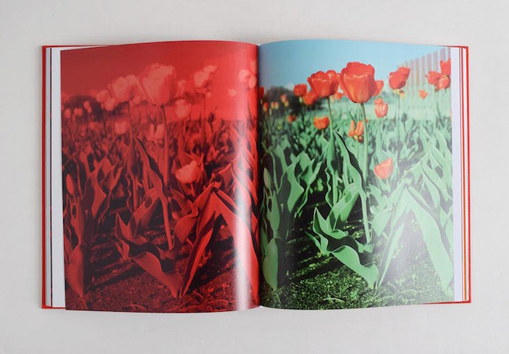 Tulips: Andrew Miksys photo book launch in London