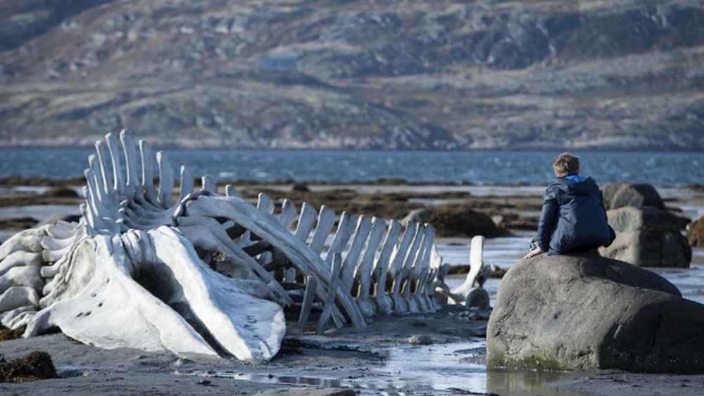 The giant: Russian auteur Andrey Zvyagintsev returns with Leviathan